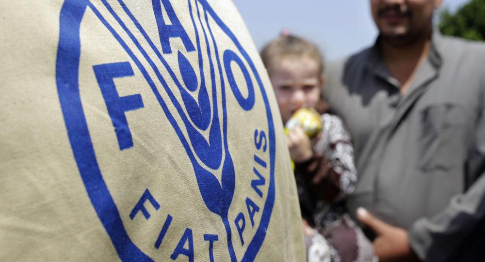 فائو سازمان خواربار و کشاورزی ملل متحد، از سازمان های بینالمللی است که در زمینه توسعه کشاورزی فعالیت دارد.
