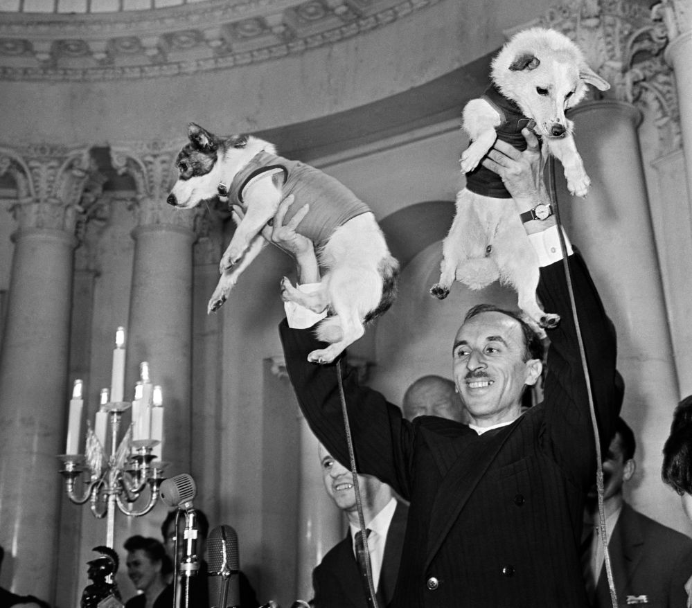 آکادمیسین اولگ گازنکو، دانشمند شوروی و سگ های بلکا و استرلکا در کنفرانس خبری