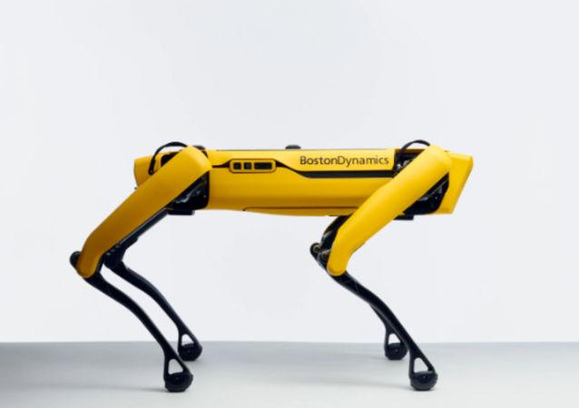 سگ روباتیک مجهز به تفنگ در آمریکا رونمایی شد