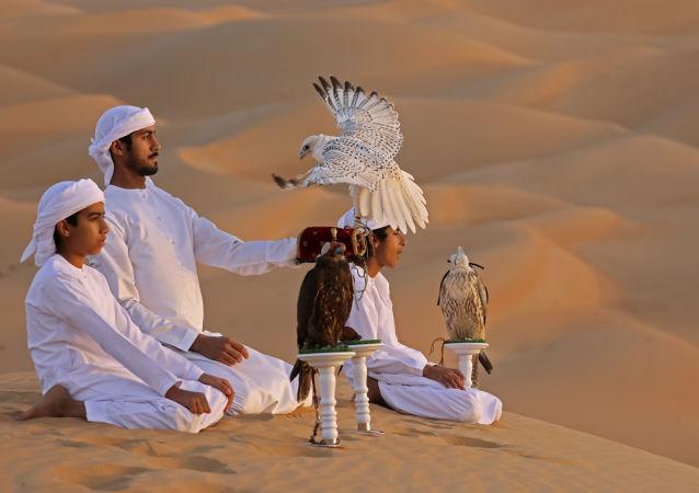 تمرین و آموزش عقاب در بیابان لیوا امارات