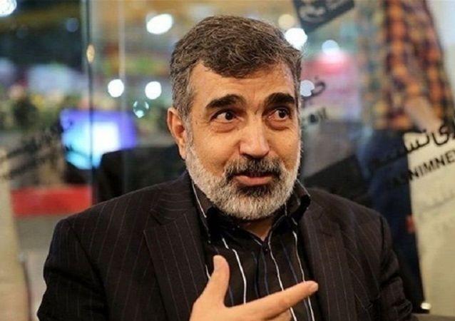 اظهارات سخنگوی سازمان انرژی اتمی ایران درباره حادثه نطنز