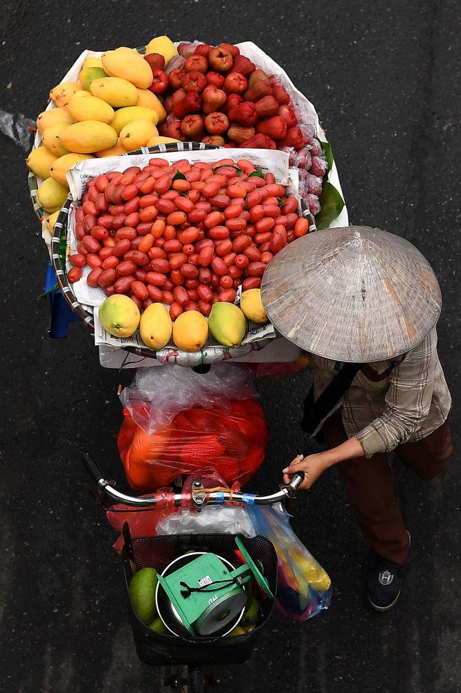 میوه فروش با دوچرخه اش