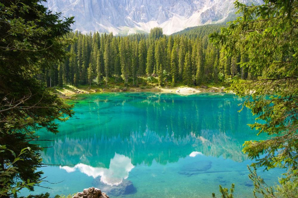 نوای طبیعت سبز درمان استرس کرونایی ایتالیا