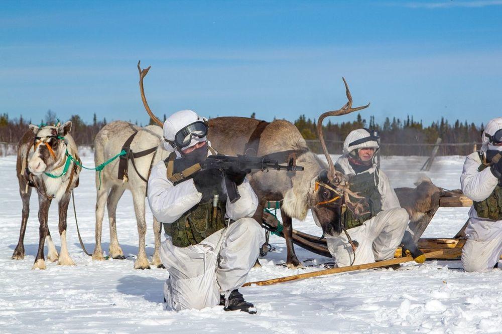 پیشاهنگان نیروی دریایی ناوگان شمال روسیه در منطقه مورمانسک