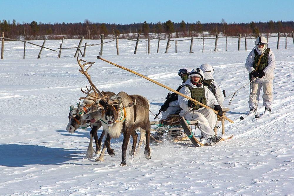 پیشاهنگان نیروی دریایی ناوگان شمال روسیه