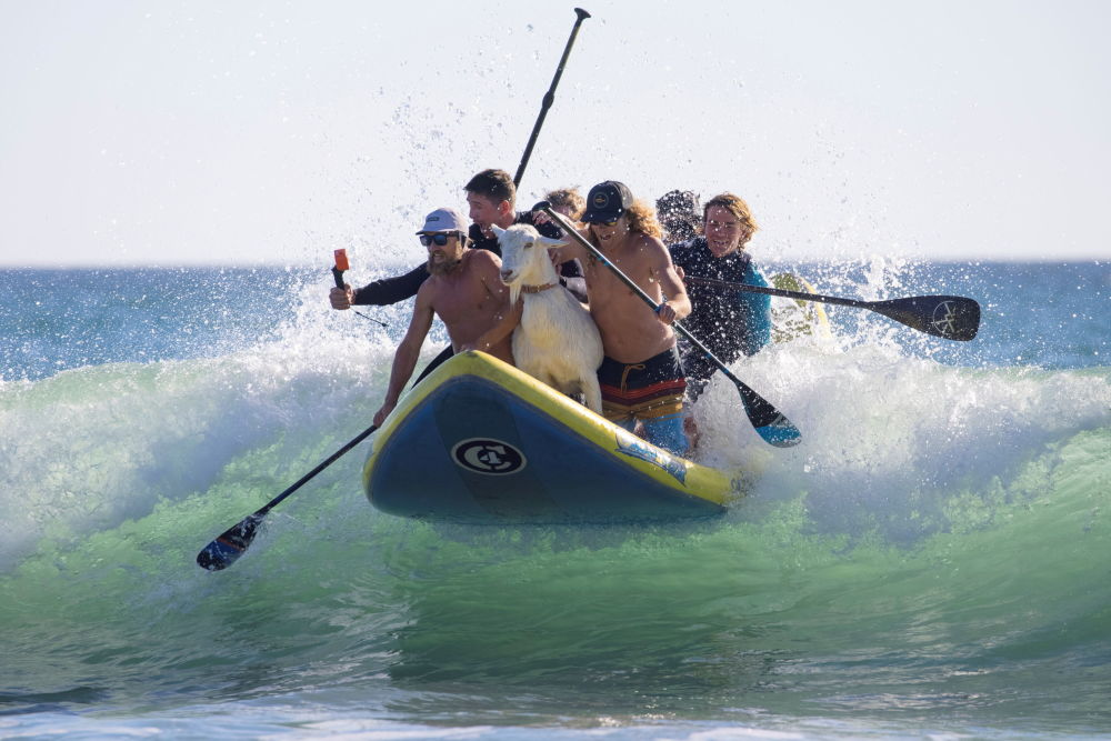 حوادث و رویدادهای جهان سرفینگ در کالیفرنیا