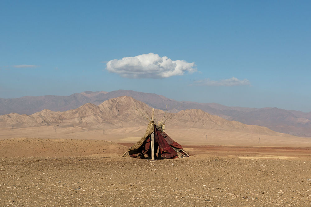 مسابقه عکاسی «سونی وورلد» 2021 میلادی عکاس، مجید حجتی از ایران
