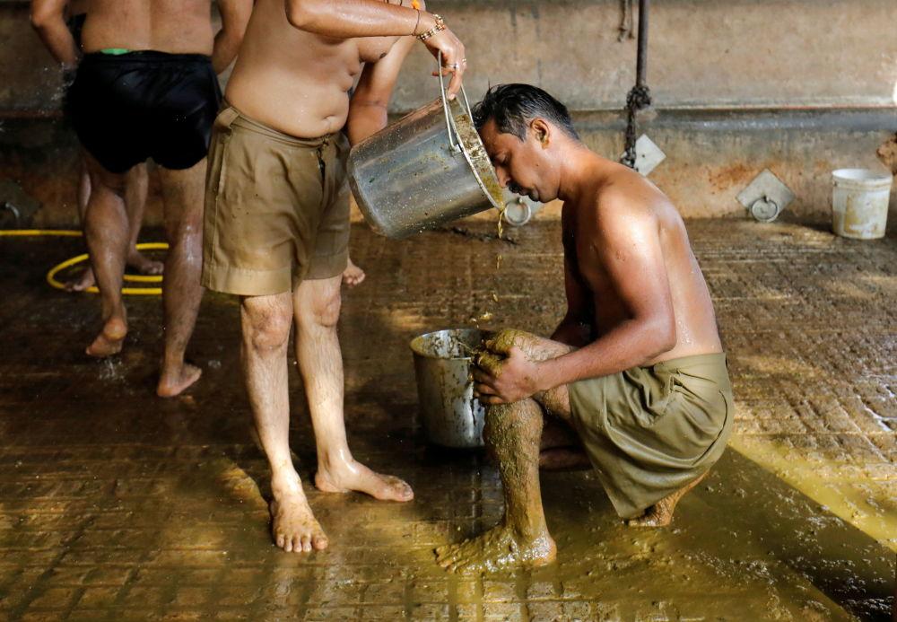 هندی هایی که کود گاوی برای دفاع در مقابل ویروس کرونا به خود مالیده اند