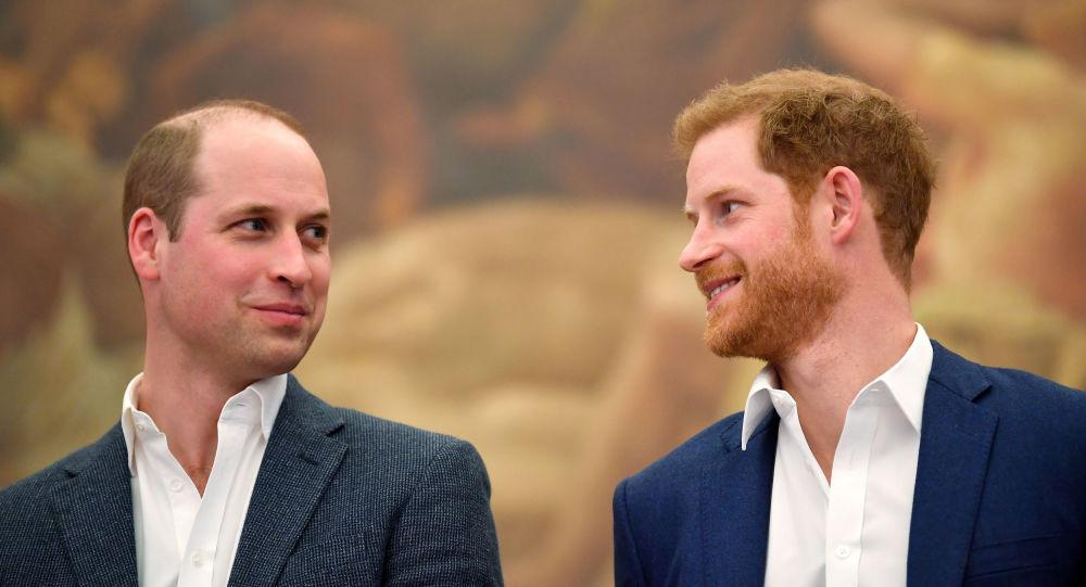 انتقاد  شاهزادگان ویلیام و هری، پسران پرنسس دایانا از بی بی سی
