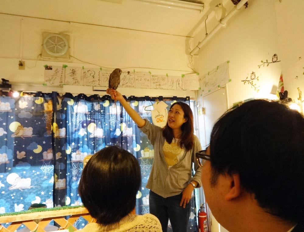 نوشیدن چای و قهوه همراه حیوانات کافه توکیو