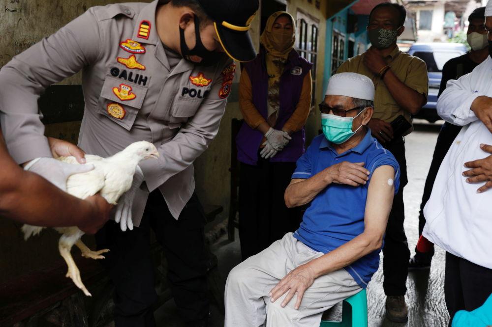 جوایز واکسن زدن در کشورهای جهان مرغ زنده در اندونزی