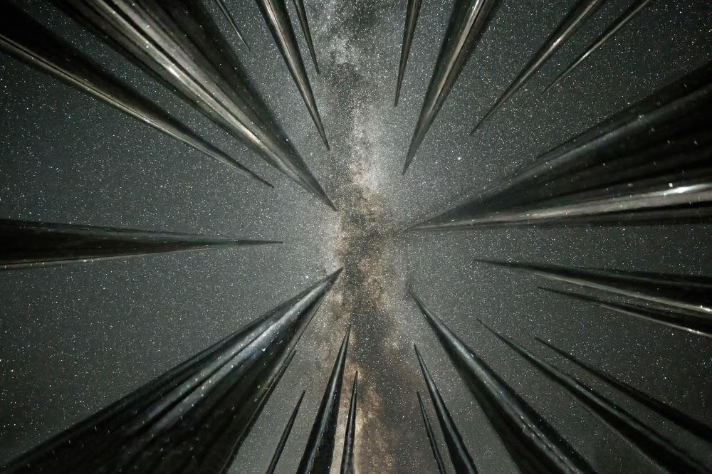 جان و روان کهکشان عکاس، وانگ جینگ از چین