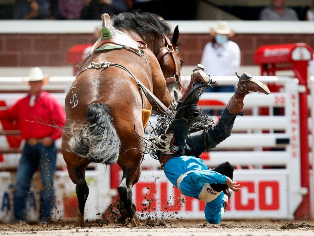رویدادهای هفته به روایت تصویر مسابقه اسب سواری در کانادا