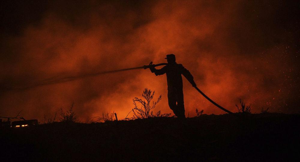 ترکیه از دستگیری فرد مضون در آتش زدن جنگل خبر داد