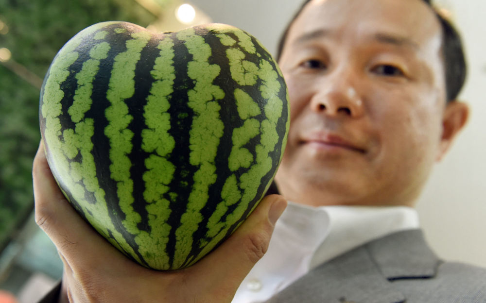 روز جهانی هندوانه توکیو ژاپن