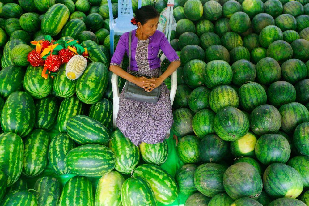 روز جهانی هندوانه میانمار