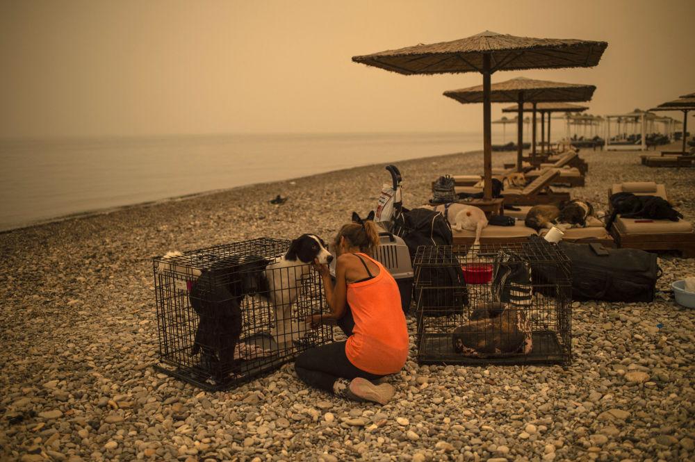رویدادهای هفته به روایت تصویر آتش سوزی یونان و تیمارداری سگ