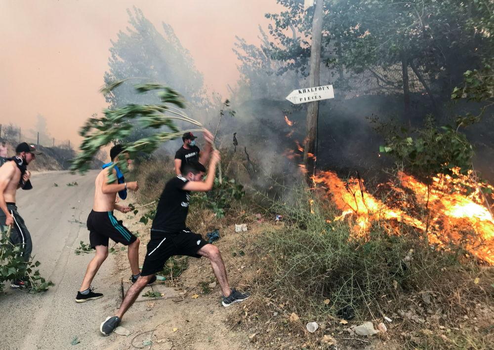 رویدادهای هفته به روایت تصویر آتش سوزی در الجزیره
