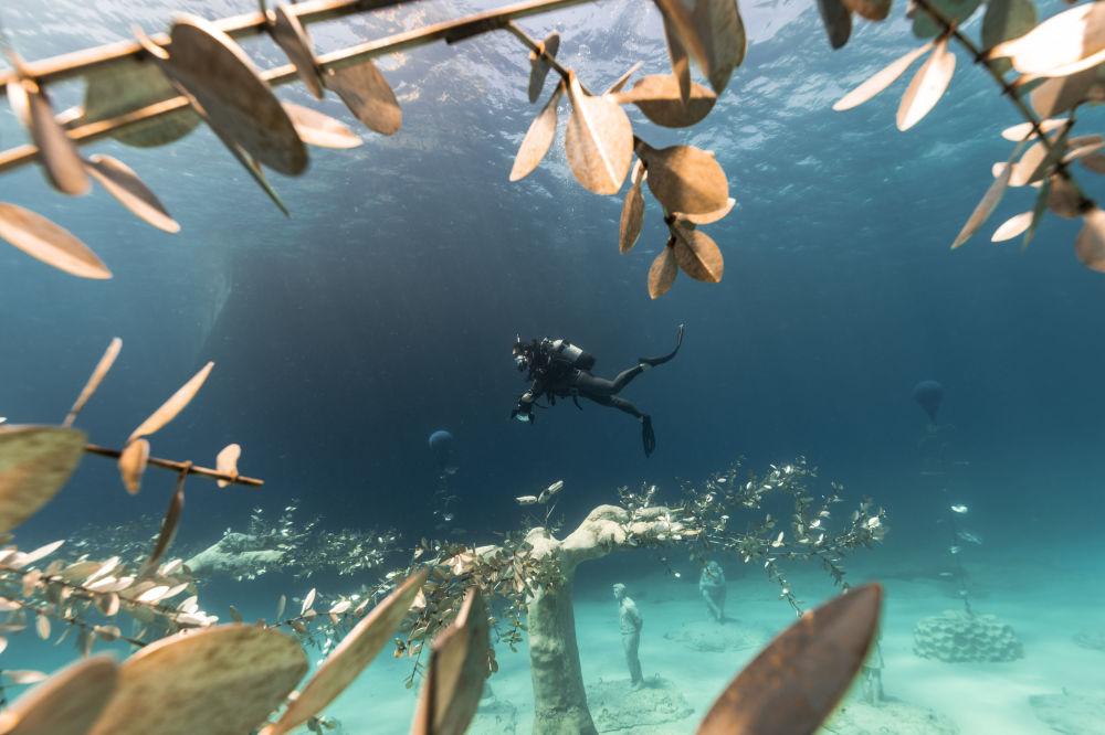 Дайвер в музее подводной скульптуры Musan у пляжа Пернера в Айя-Напе, Кипр