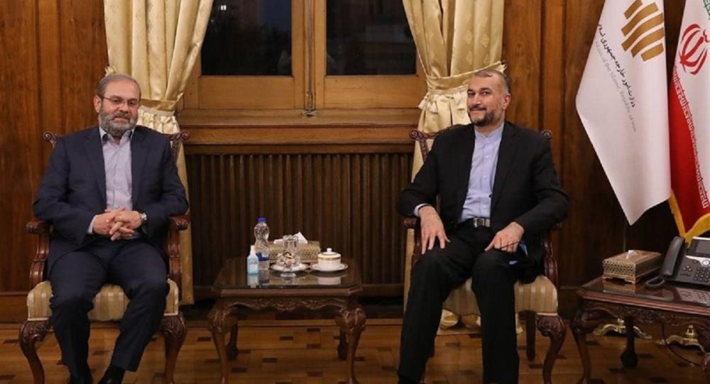 عبدالله صفی الدین نماینده جنبش حزب الله لبنان در جمهوری اسلامی ایران و حسین امیرعبداللهیان وزیر امور خارجه ایران