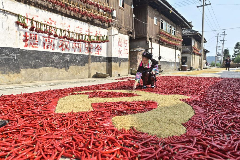 دختری در کنار پرچم کمونیست با فلفل قرمز و ذرت در چین