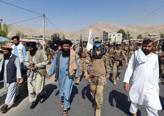 طالبان: به داعش اجازه حمله به ایران از خاک افغانستان را نمی دهیم