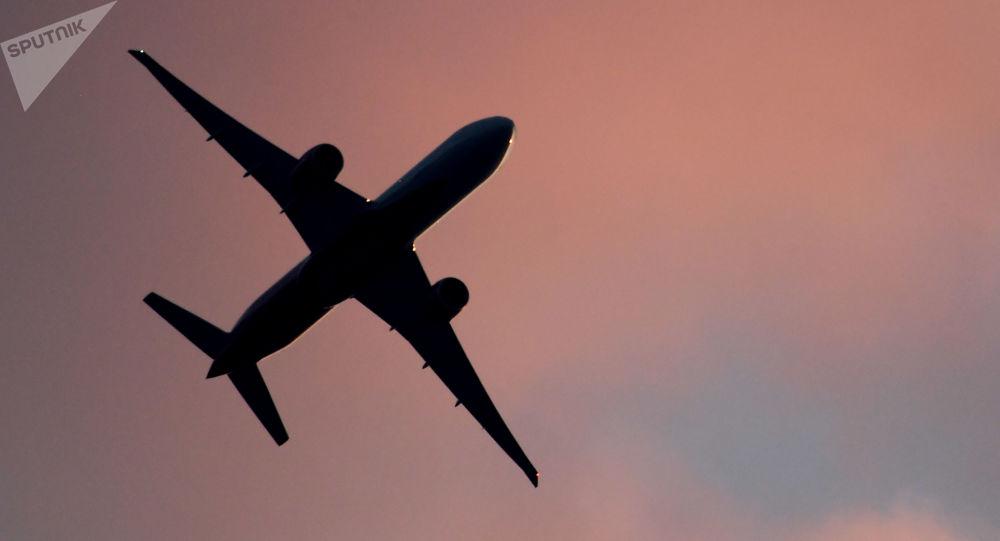 آتش گرفتن هواپیمای مسافربری در آمریکا به خاطر یک پرنده