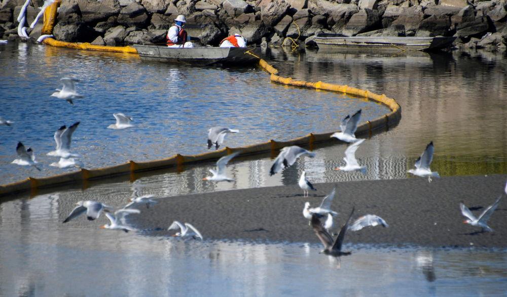 وضعیت نشت نفت در نزدیکی سواحل کالیفرنیا