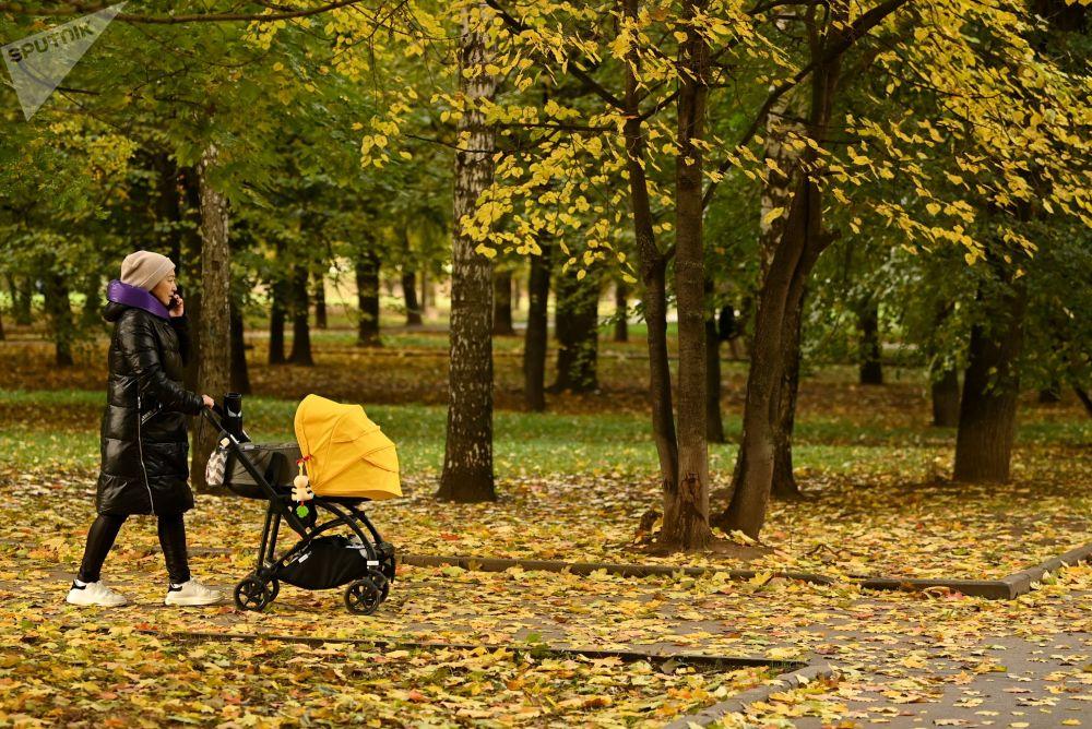 پاییز، مسکو را رنگ زده است