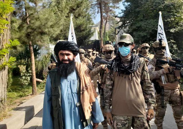 طالبان داعش را نه تهدید بلکه دردسر می نامد