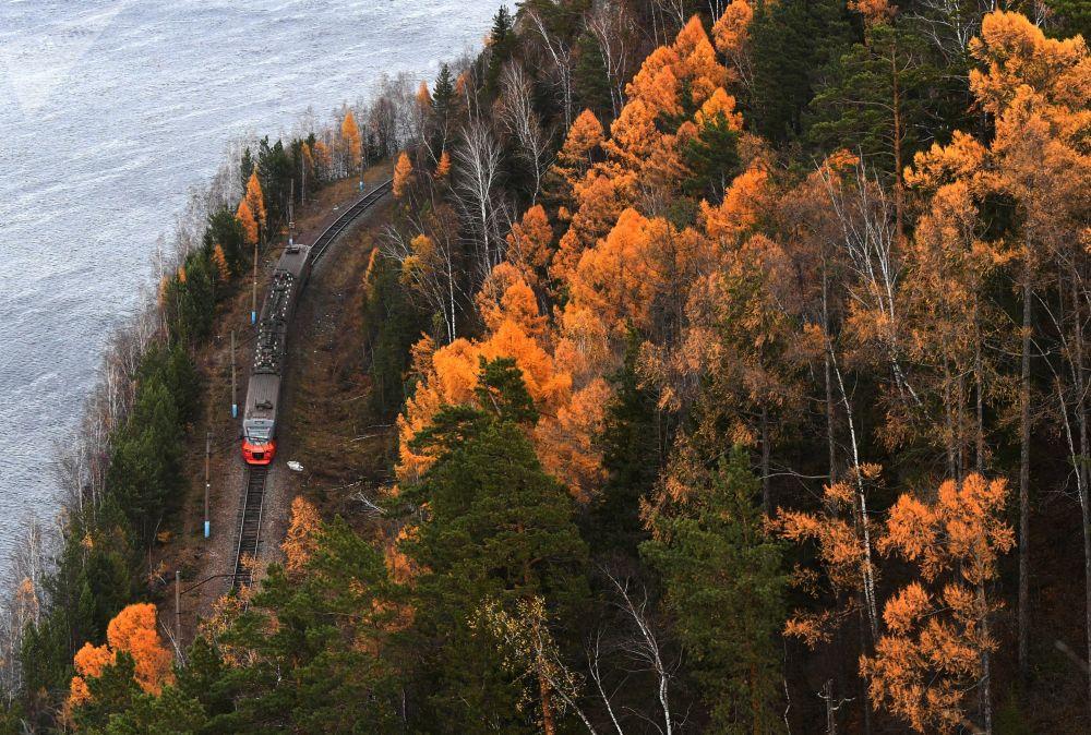 پاییز در سیبری روسیه