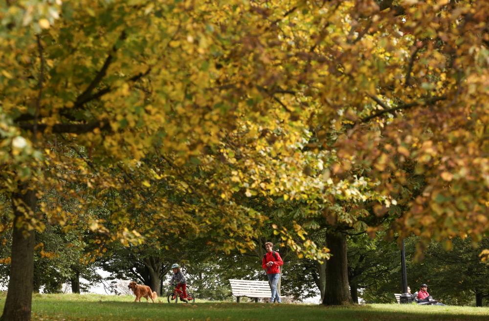پاییز در لندن