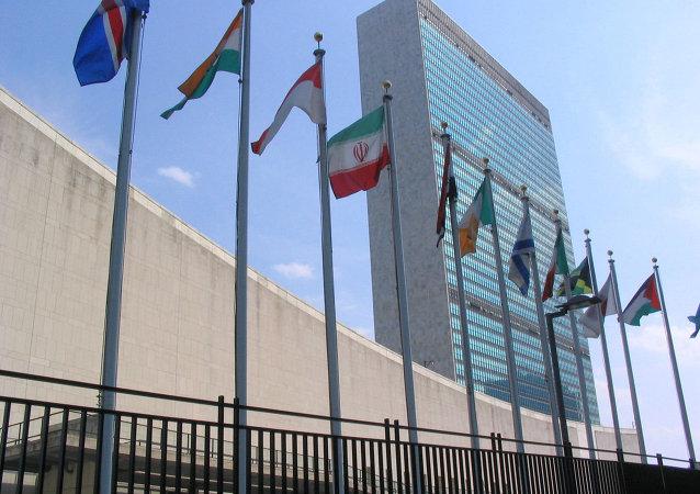 جوکی به نام تشکیلات حقوق بشر سازمان ملل