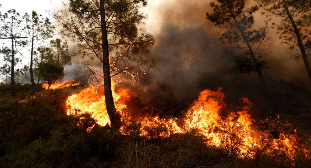 تخلیه یک شهر در آمریکا بهخاطر آتش سوزی مهیب + عکس