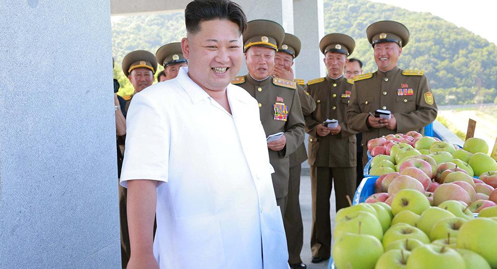 سئول تائید کرد که در صورت ضرورت آماده کشتن کیم جونگ اون است