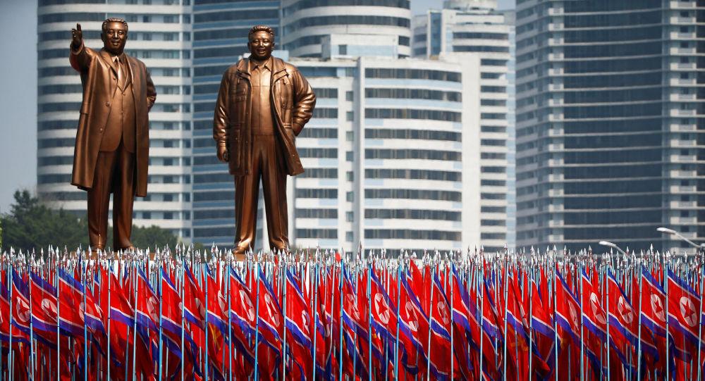 پیونگ یانگ از نقض حاکمیت کره شمالی توسط شورای امنیت سازمان ملل خبر داد