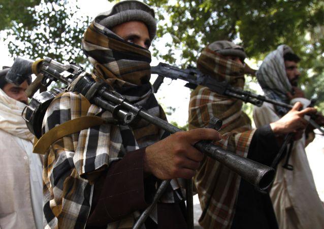 طالبان گمرک اسلام قلعه در مرز ایران را تصرف کردند