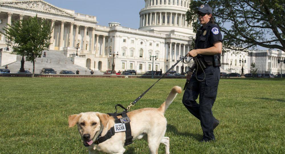 امروز تظاهرات حمایت از مهاجمان به کاخ کنگره در واشنگتن برگزار می شود