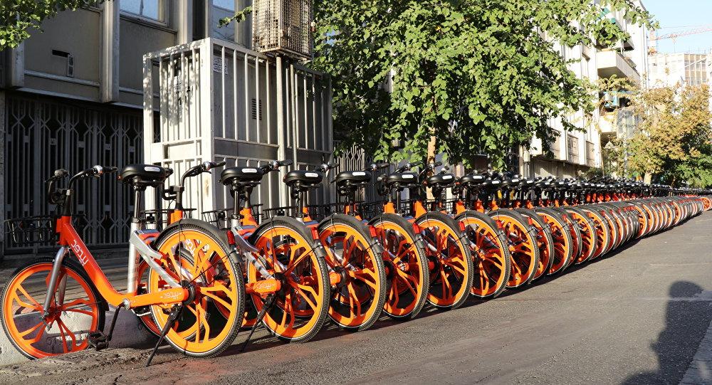 دوچرخه های نمایندگان مجلس دانمارک +عکس