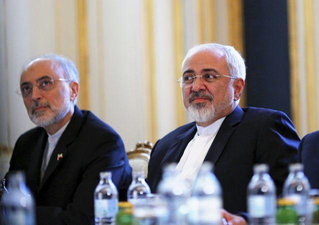 رییس سازمان انرژی اتمی ایران: امروز بررسی موضوعات فنی پایان می یابد