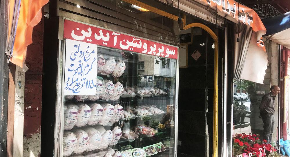 فروش مرغ در تهران