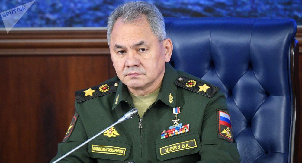 ارتشبد سرگئی شویگو، وزیر دفاع روسیه