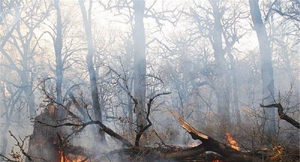 وقوع آتش سوزی گسترده در ارتفاعات کازرون