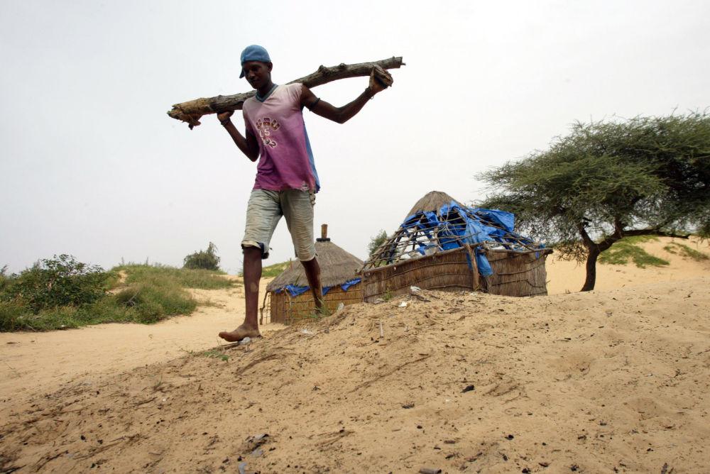 اهالی روستایی در سنگال با کاشتن درختان در سه هکتار از زمین های اطراف خود توانستند جلوی پیشروی کویر را بگیرند