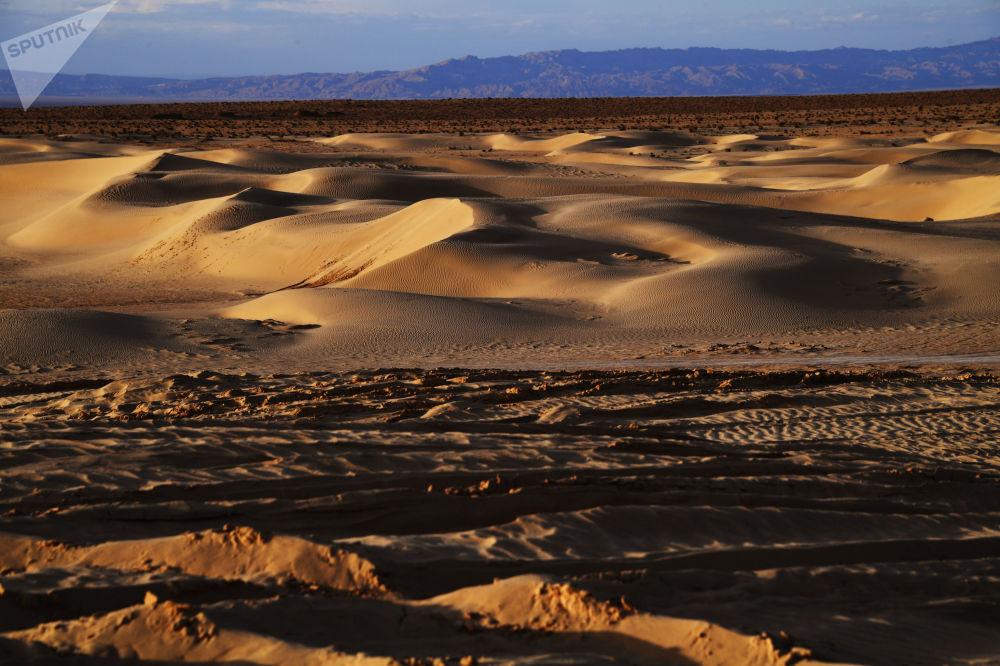 کویر در اطراف دریاچه شط الجدید در تونس