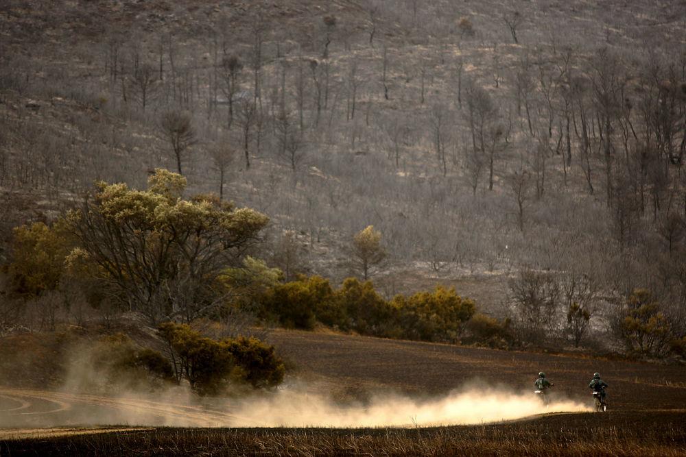 آتش سوزی های جنگلی در  منطقه ساراگوسا اسپانیا باعث پیشروی کویر در این کشور شده است.